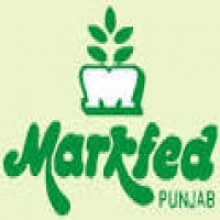 MARKFED Punjab Recruitment: Form for Senior Assistant, Steno Typist, Assistant Engineer -Last Date: 18th April 2019